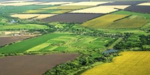Какие участки входят в категорию земли запаса