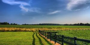ФЗ закон об обороте сельхозземель вступил в силу 01.07.2011
