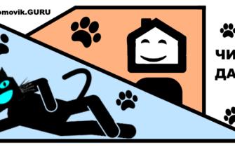 День кота - комиксы домовик.гуру