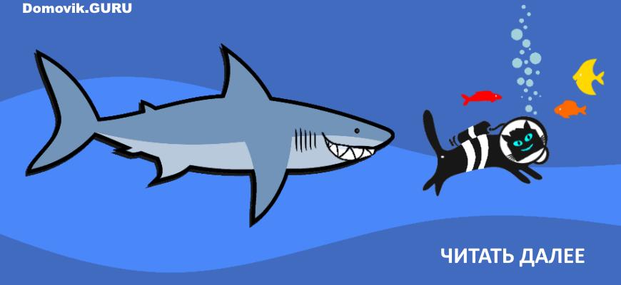 Зимняя рыбалка - комиксы домовик.гуру